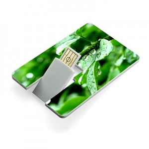 Usb flash drive archives brandingifts sdn bhd card business card size flash drive reheart