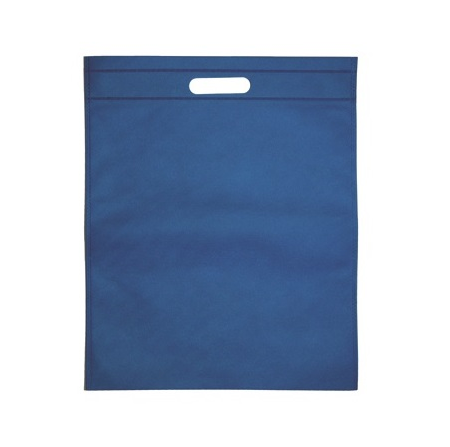 Non Woven Sleeve Bag